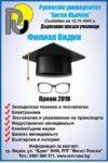 РУ-Видин